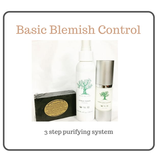 BASIC BLEMISH BUNDLE