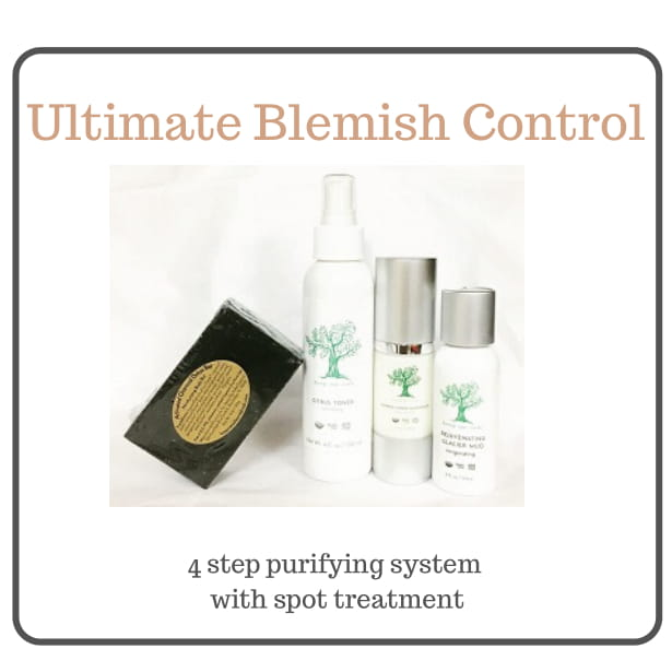 ULTIMATE BLEMISH BUNDLE